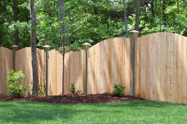 Chesapeake Fence Code About Us How To Prune A Dragon
